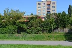 Svitava_20-08-16_0267