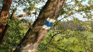 Modra-znacka