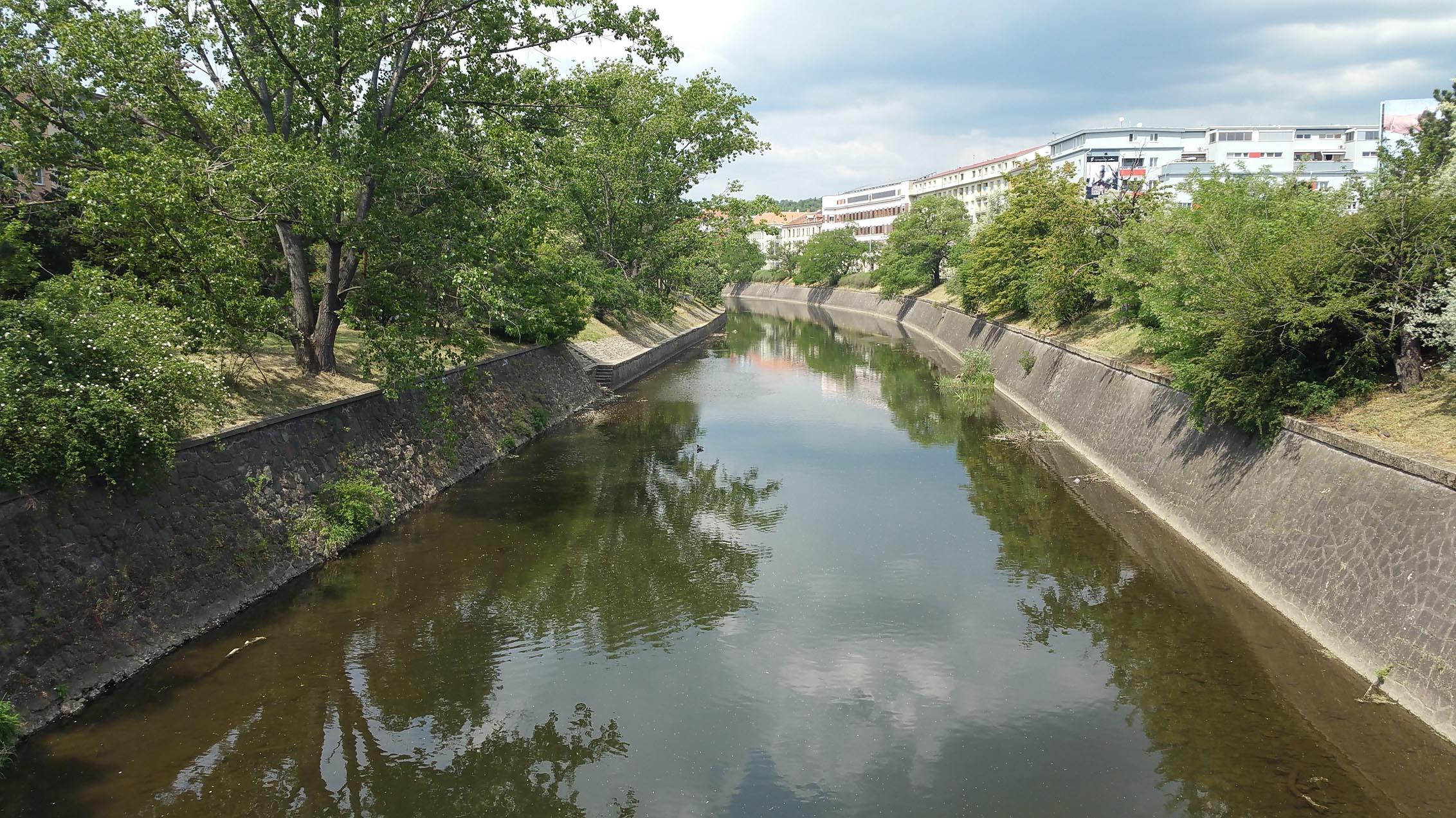 Koryto řeky Svratky, jaro 2018