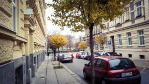 ulice Traubova