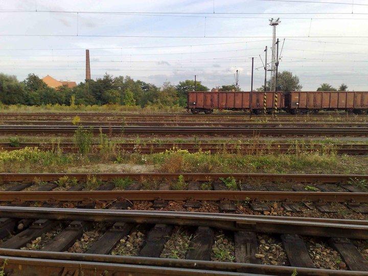 Pohled přes rosického nádraží, za tratí je již Komárov. U tratí jsou zbytky zahrádkářské kolonie.