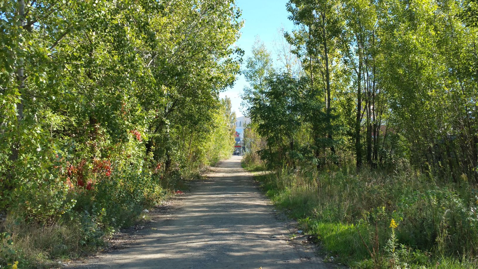 Les Trnitá u Vaňkovky