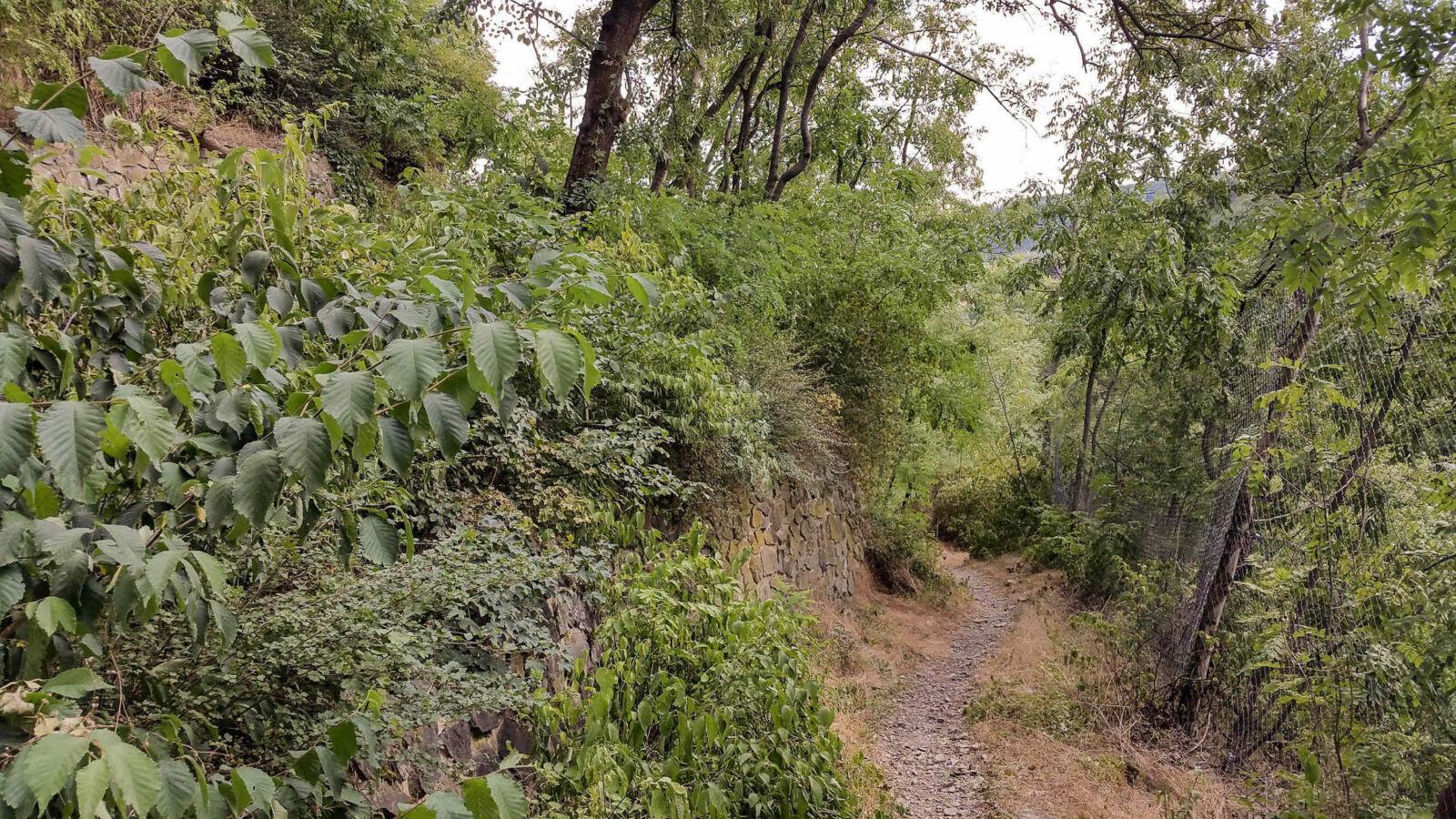Serpentýny na Stránice